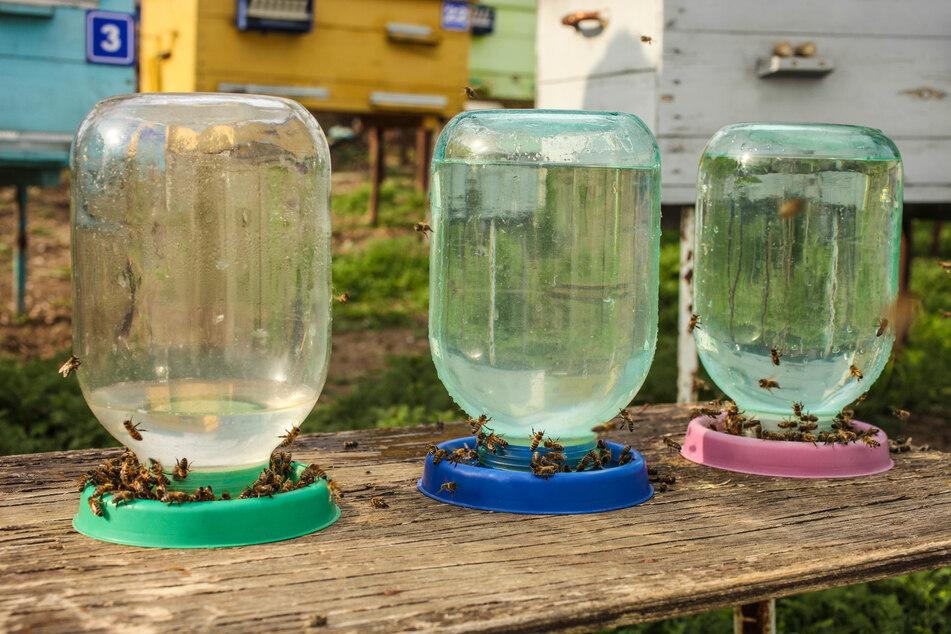 Insektentränken mit Flaschen leicht selber basteln oder fertig kaufen (Foto).