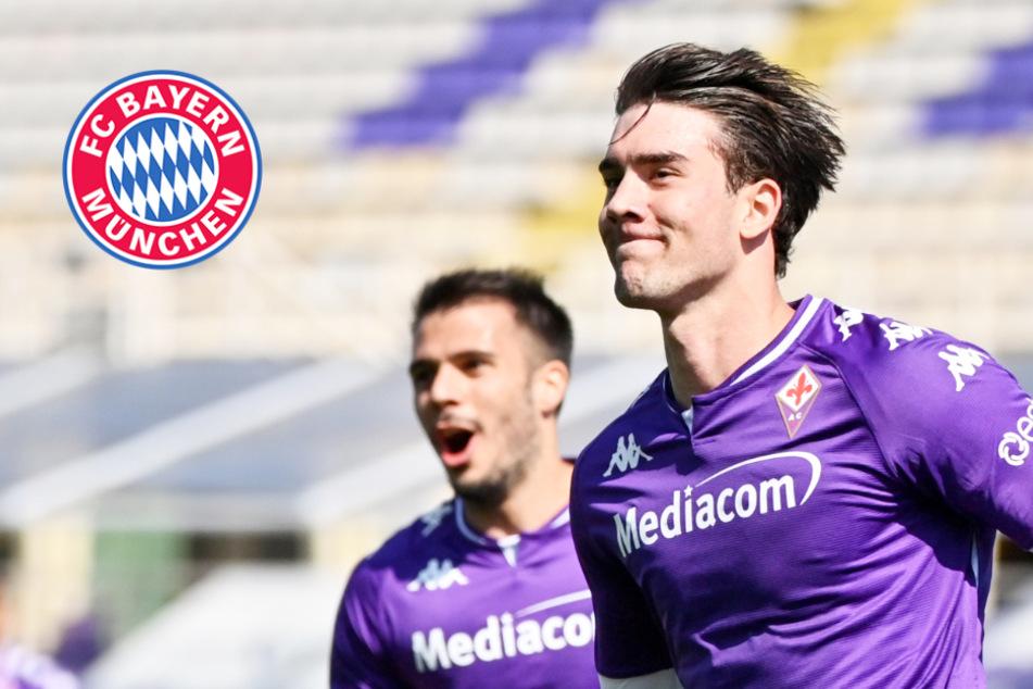Lewandowski-Nachfolger? FC Bayern in Kontakt mit Florenz-Youngster