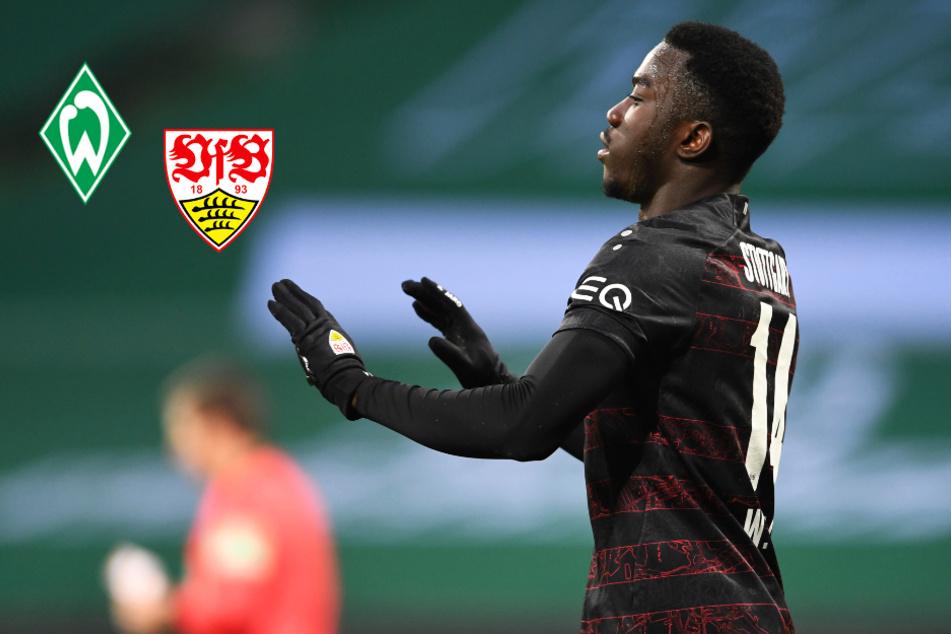 Unsportlich? VfB-Star Wamangituka sorgt mit kuriosem Treffer für Diskussionen