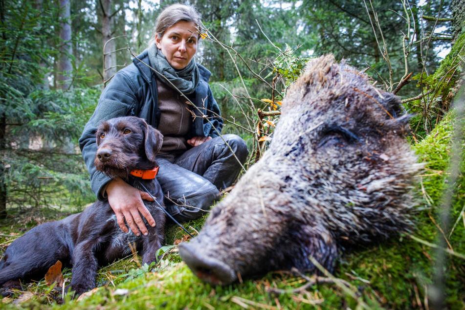 Ausbilderin Anja Blank lobt ihren Hund Bertha nach dem Auffinden eines zu Trainingszwecken ausgelegten Wildschweinkopfs.