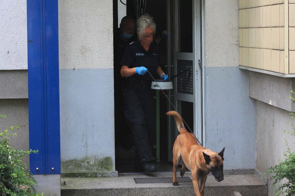 Auch ein Spürhund kommt bei der Durchsuchung zum Einsatz.