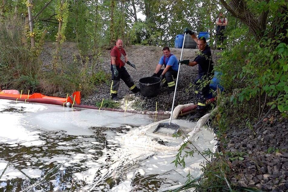 Seit Sonntag bekämpft die Feuerwehr bei Harsleben eine ölige Flüssigkeit, die sich in der Natur ausgebreitet hat. Der Grund dafür ist noch unklar.