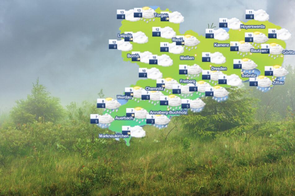 Seit nunmehr zwei Wochen kommt in Sachsen kaum noch die Sonne raus, das trübe Herbstwetter hat den Freistaat in der Hand. (Symbolbild)