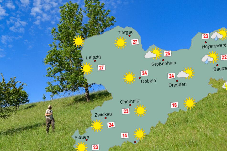 In den nächsten Tagen können sich die Menschen in Sachsen auf hohe Temperaturen freuen.