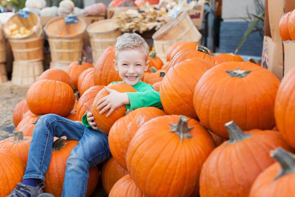 Der Herbstmarkt hat besonders für die Kinder eine Menge zu bieten. (Symbolbild)