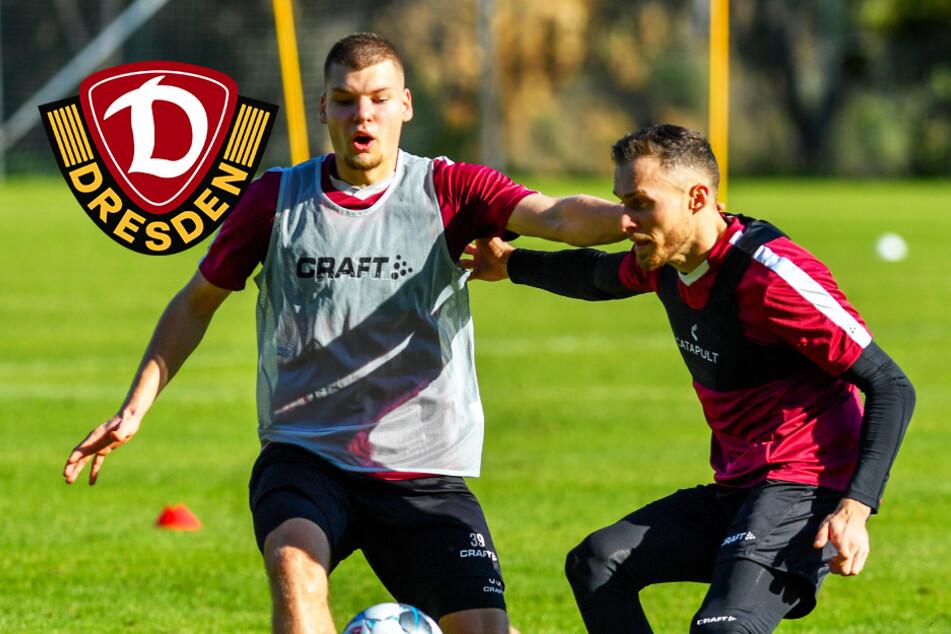 Dynamo: 13 Spielerverträge laufen aus, Verhandlungen vorerst auf Eis gelegt!