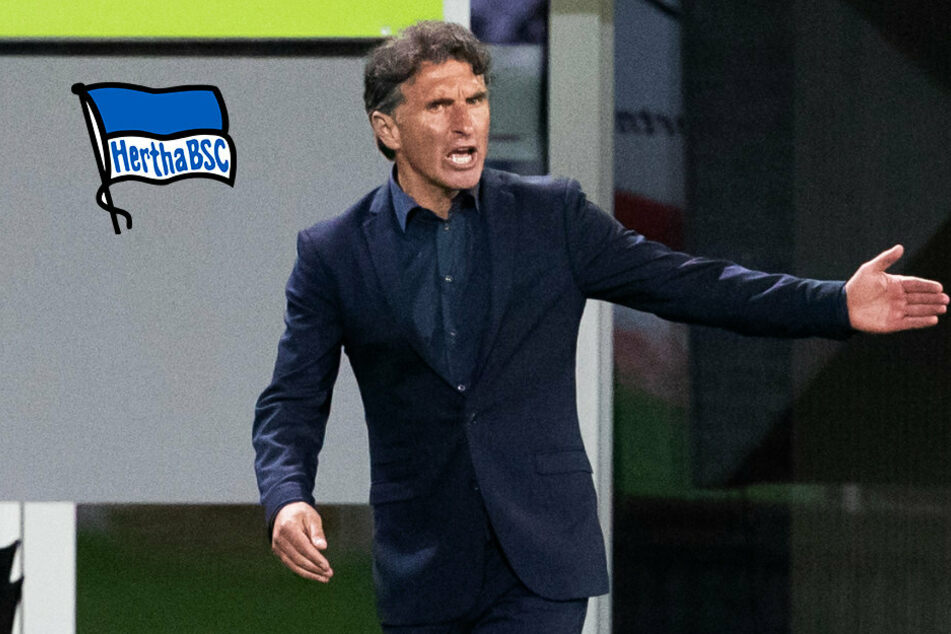 Hertha-Coach Labbadia spricht sich gegen Transfer-Wahn aus