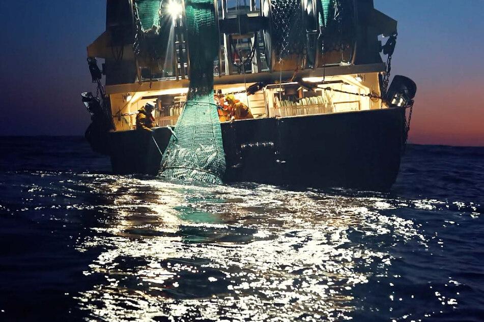 """Szene aus """"Seaspiracy"""": Ist nachhaltige Fischerei für den Menschen wirklich unmöglich?"""