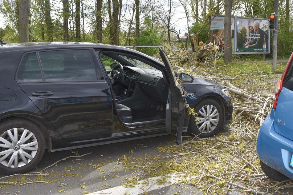 Unwetter-Warnung: Orkanböen fegen mit bis zu 140 km/h über Sachsen-Anhalt!