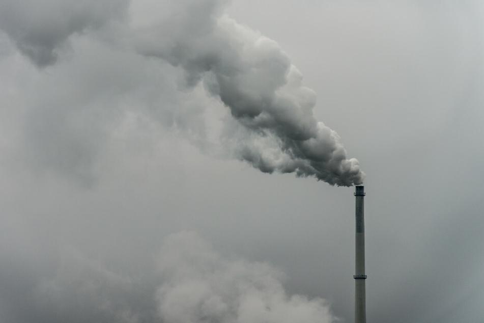 Ein Fabrikschornstein pustet CO2 in die Atmosphäre. Die Lockdowns aufgrund der Corona-Pandemie haben zu einer deutlichen Reduzierung der CO2-Emissionen geführt. (Symbolfoto)