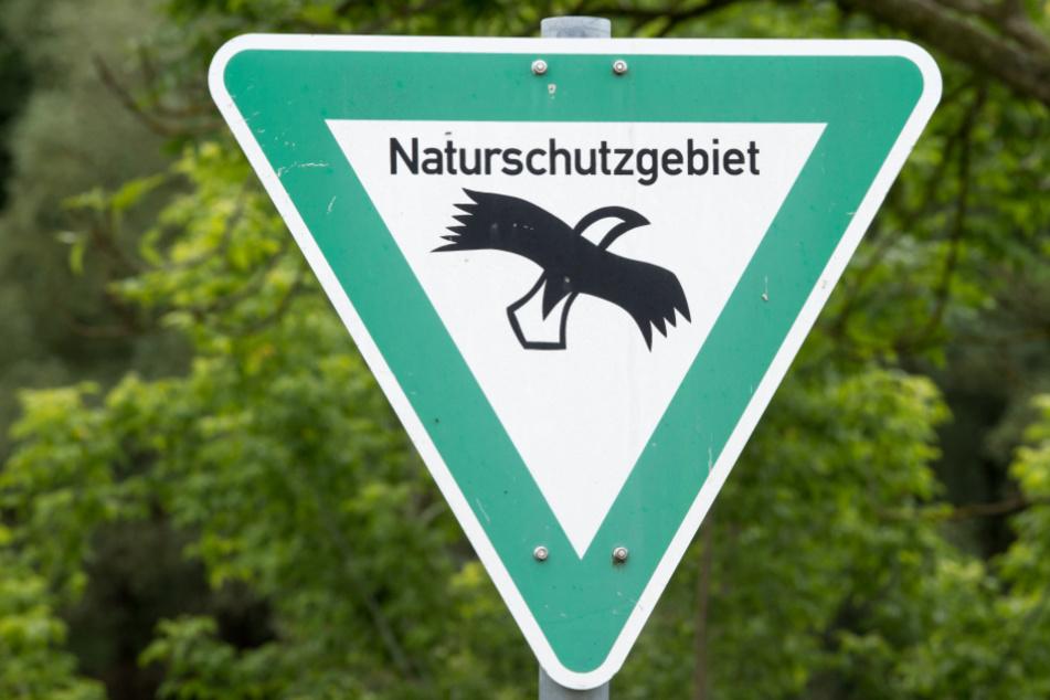 Die entsprechende Fauna-Flora-Habitat-Richtlinie der Europäischen Union stammt aus dem Jahr 1992. (Symbolbild)