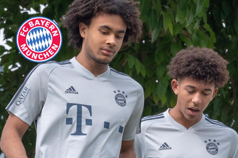 FC Bayern mit Verleihoffensive? Diese Youngster kicken wohl bald für andere Klubs