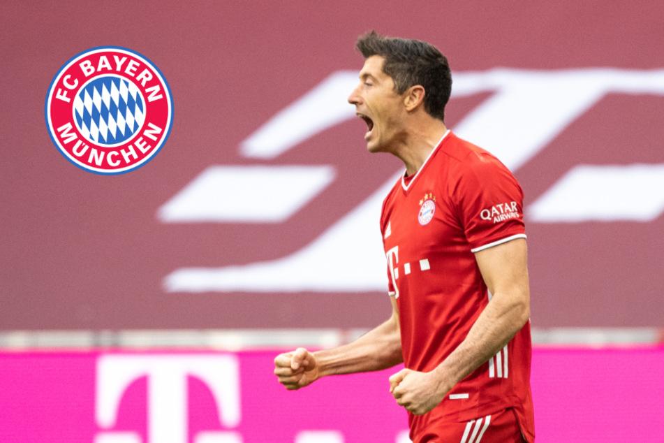 Bayern ohne Lewandowski nach Köln: Wird der Stürmer geschont?