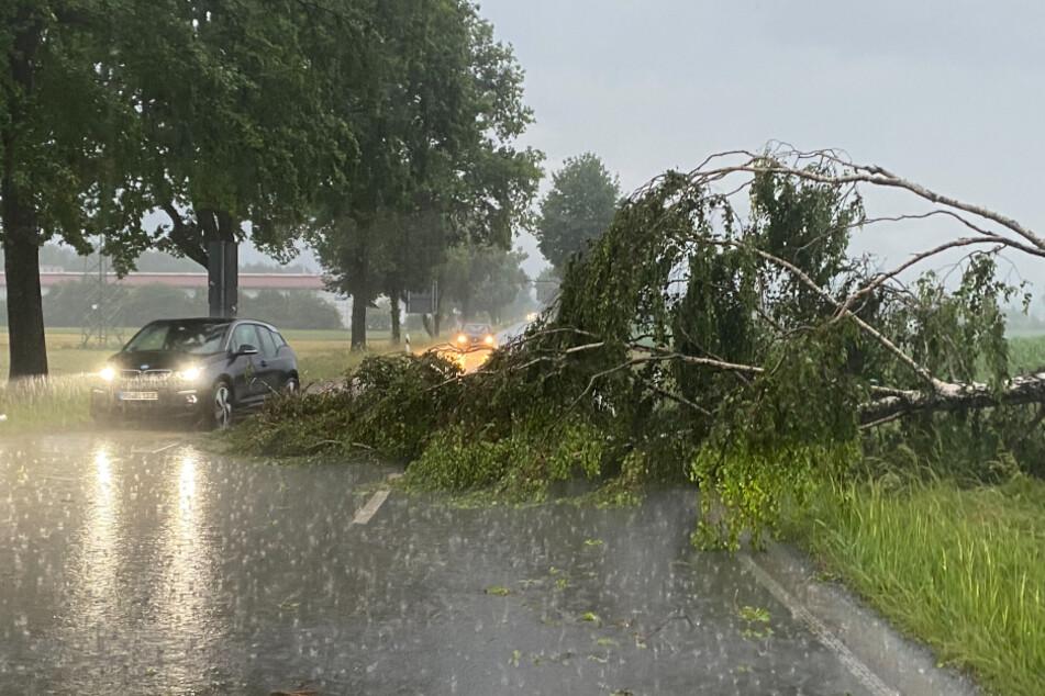 Schwere Gewitter am Chiemsee halten Einsatzkräfte in Atem: Auch Kreis Traunstein betroffen