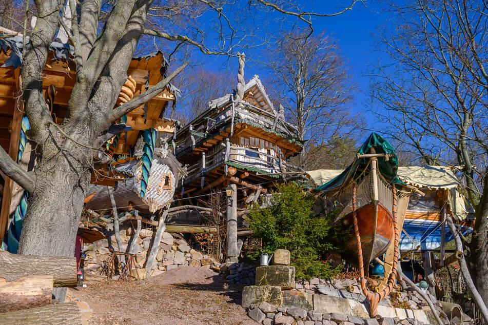 Leider schon fast alles ausgebucht: Der Luxus-Urlaub über den Baumwipfeln