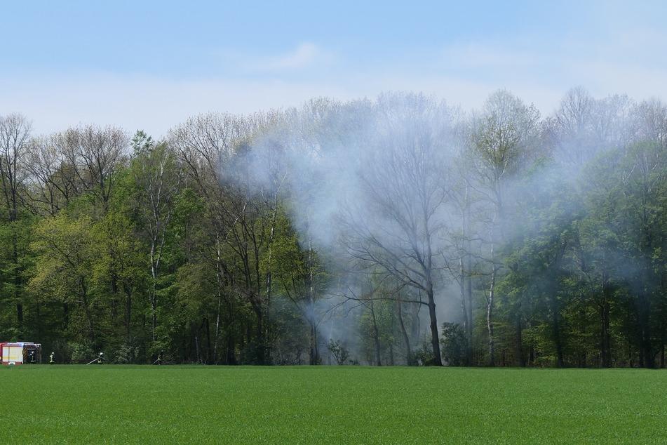 Eine Fläche von 100 Quadratmetern soll in Flammen gestanden haben.