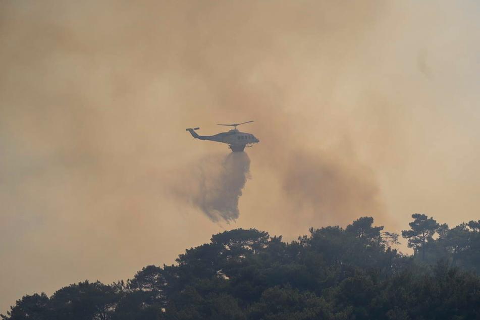 Dutzende Feuerwehrleute, die von drei Hubschraubern und drei Tankflugzeugen unterstützt werden, bekämpfen einen Flächenbrand auf der Insel, der am 15. Juli ausgebrochen ist.
