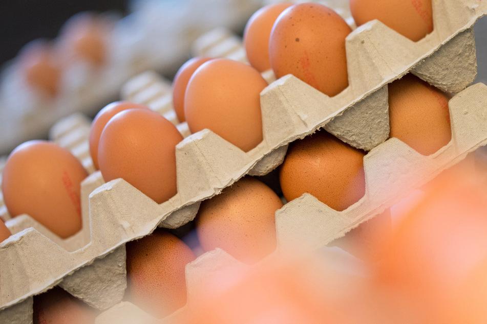 Eierkartons sind in den USA derzeit knapp.