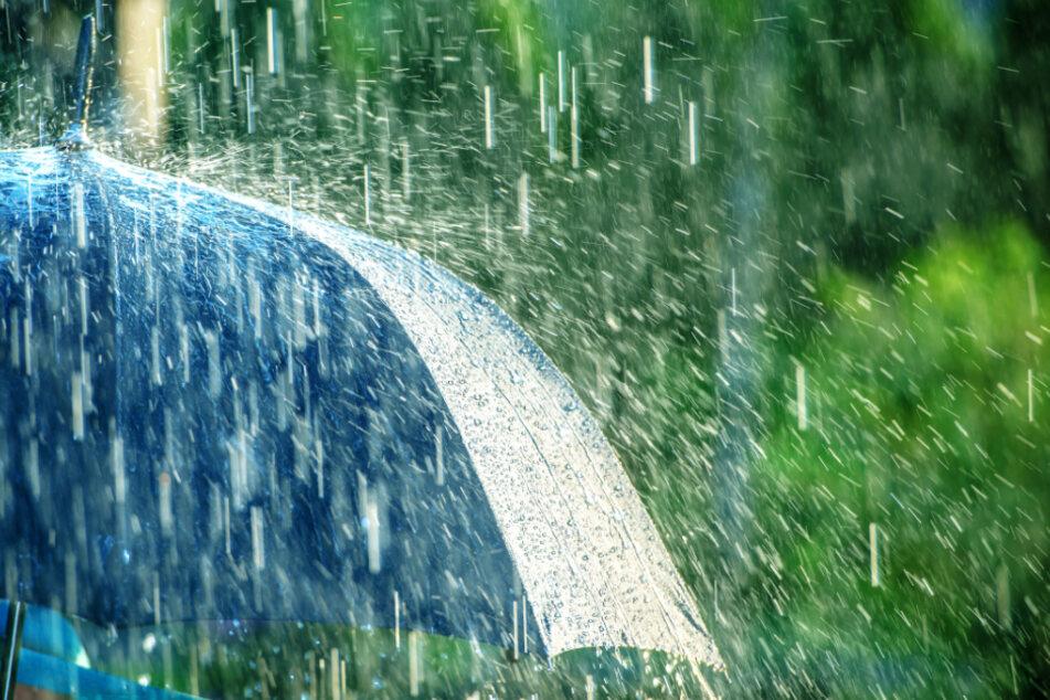 Einen Schirm dabei zu haben, kann dieses Wochenende nicht schaden. (Symbolbild)