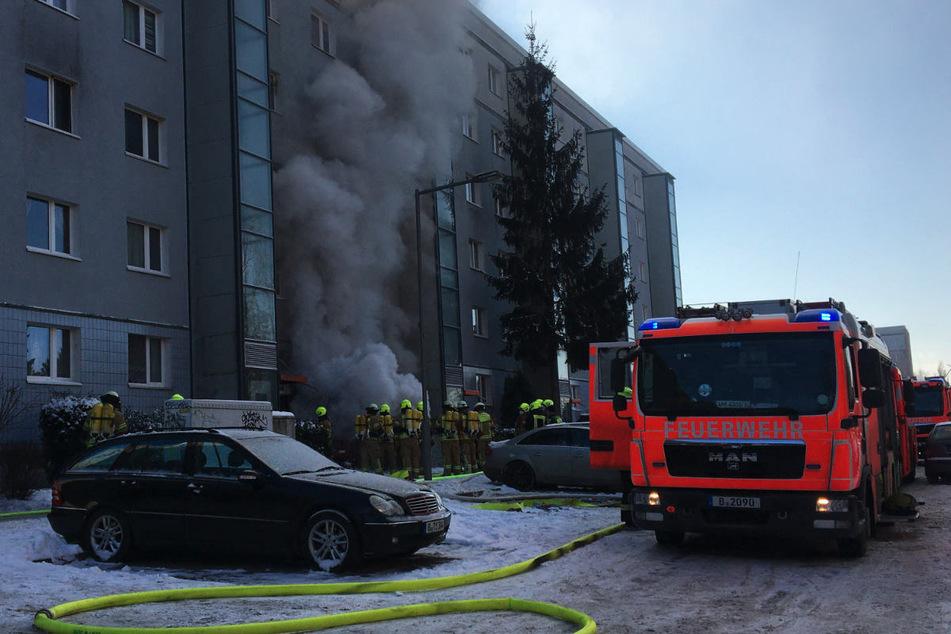 In der Schwarzwurzelstraße in Berlin-Marzahn steht ein Keller in einem Wohnhaus in Flammen.