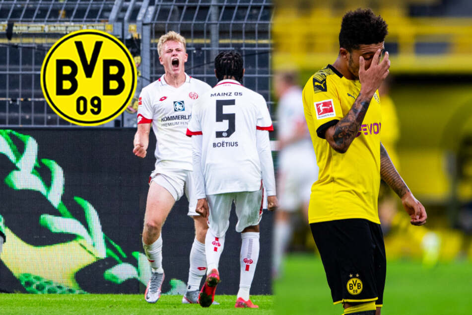 BVB blamiert sich gegen 1. FSV Mainz 05 bis auf die Knochen!
