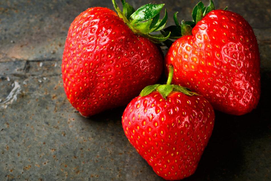 Erdbeeren richtig kaufen, pflücken und lagern: Das solltet Ihr beachten!