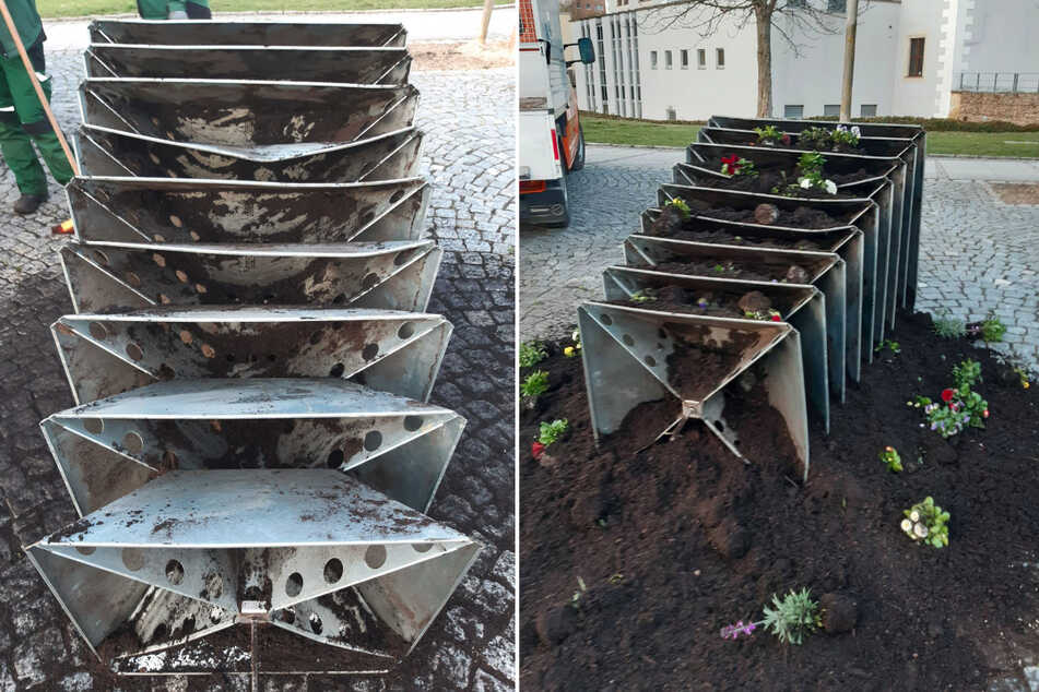 Blumen-Pyramide umgeschubst: Vandalen ziehen durch Zwickau