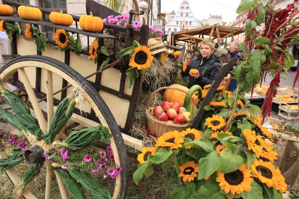 Viele Händler präsentieren auch dieses Jahr ihre Ware und Handwerk auf dem Domhof in Zwickau. (Archiv)