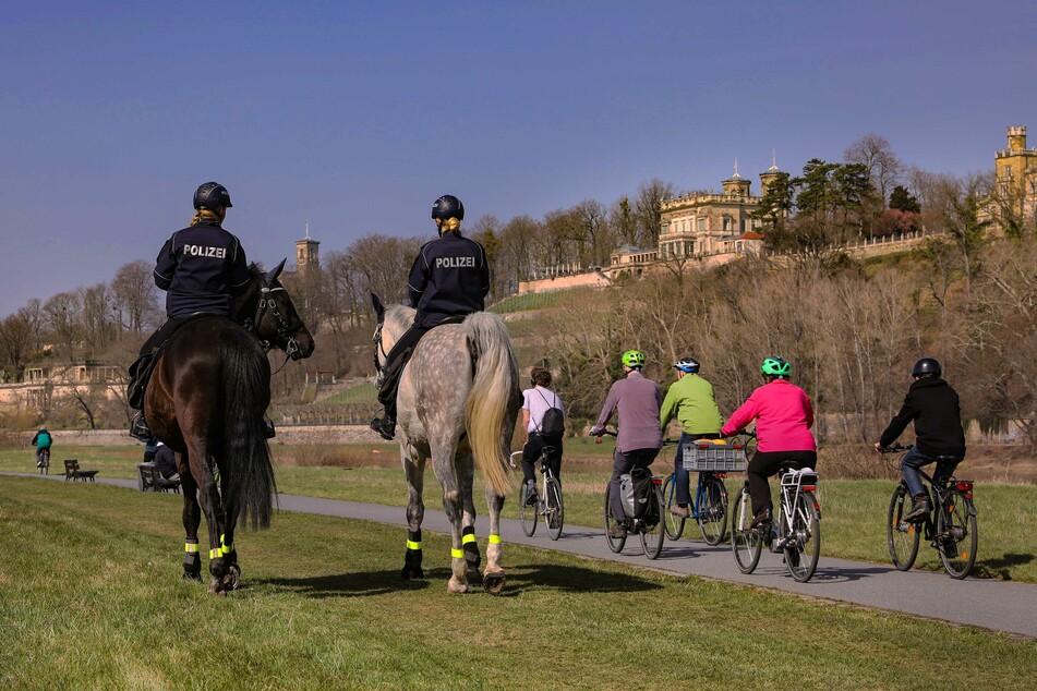 Polizei zu Pferd kontrolliert das Dresdner Elbufer.