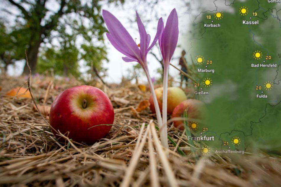 Hessen freut sich auf schöne Spätsommer-Tage! So wird das Wetter