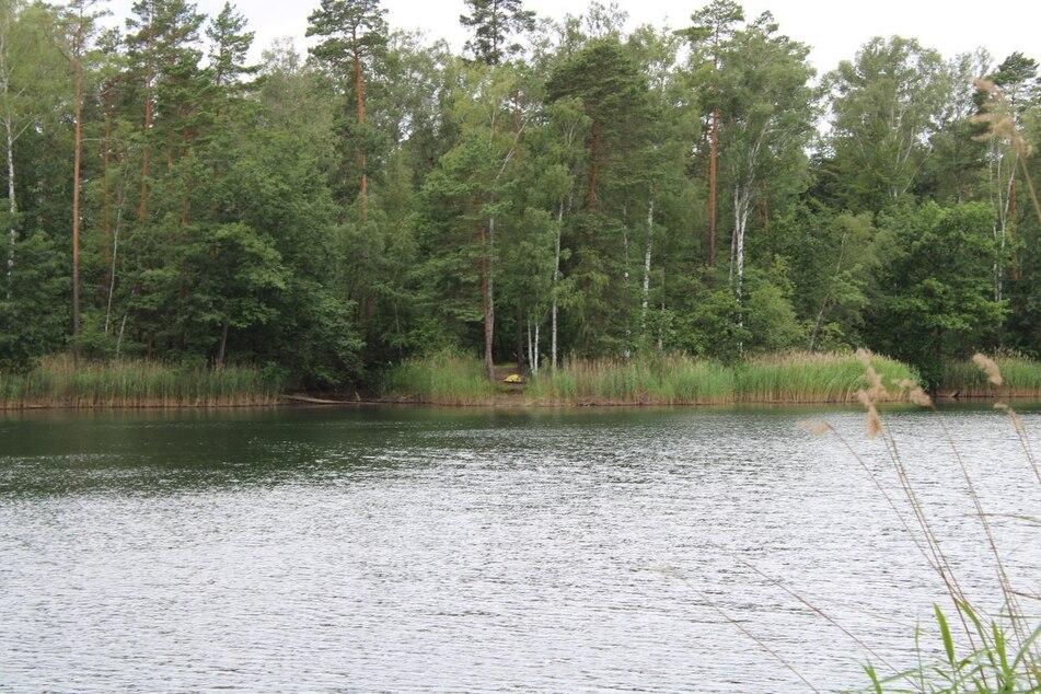 Weißwasser: Leiche im Waldsee gefunden