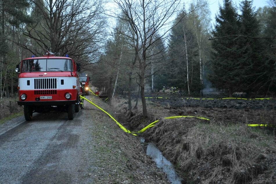 Zum Einsatz am Freitag wurden zahlreiche Wehren und Fahrzeuge herbeigerufen.