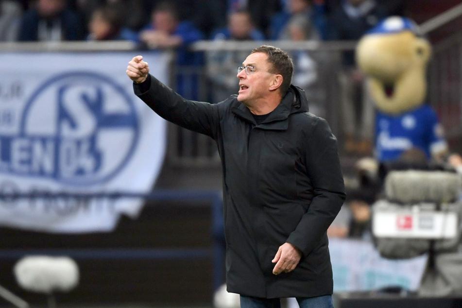 Den Job als Feuerwehrmann beim FC Schalke 04 kann sich Ralf Rangnick (62) derzeit schwer vorstellen.