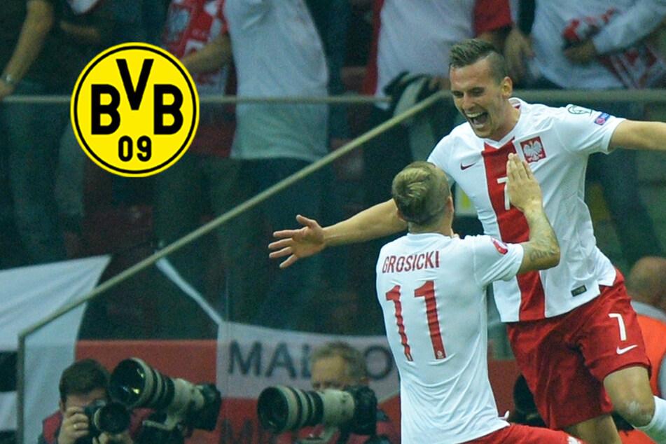 BVB an polnischem Sturmstar dran: Kommt Ex-Leverkusener nach Dortmund?