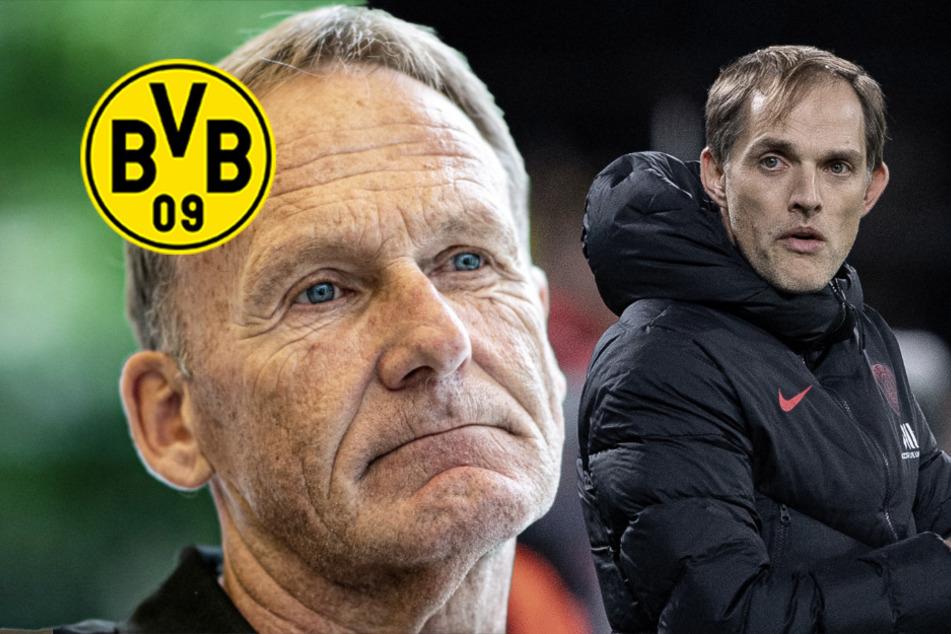 """BVB-Boss Watzke ätzt bei Maischberger gegen Tuchel: """"...sieht man auch in Paris"""""""