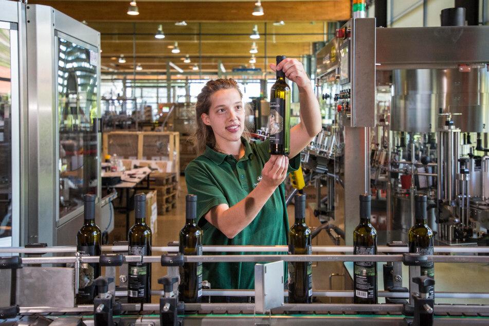 Anna Eichhorn kontrolliert die Abfüllung der edelsüßen Weine. Sie haben nur einen kleinen Anteil an der Jahresproduktion von rund 600.000 Flaschen Wein und Sekt.