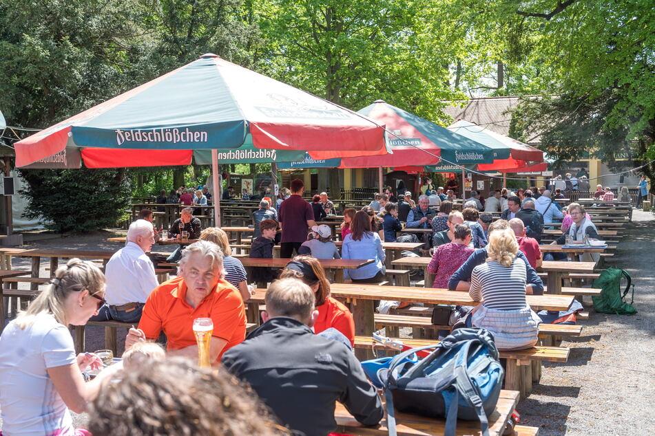 Die Dresdner genossen das lange Pfingstwochenende in den Biergärten.