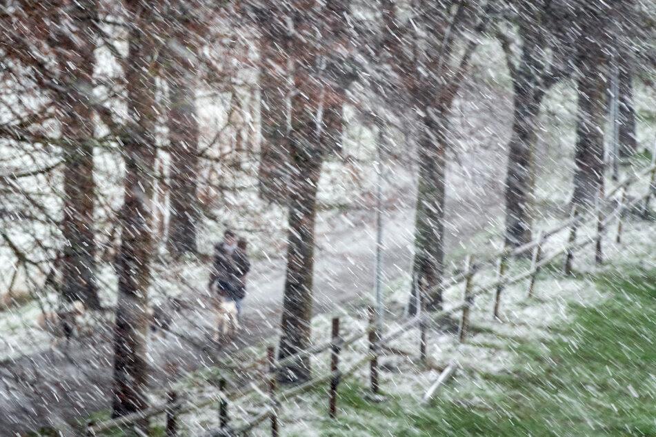 In Nordrhein-Westfalen werden ab Mittwochabend zunehmend Schneefälle und damit einhergehend glatte Straßen erwartet.
