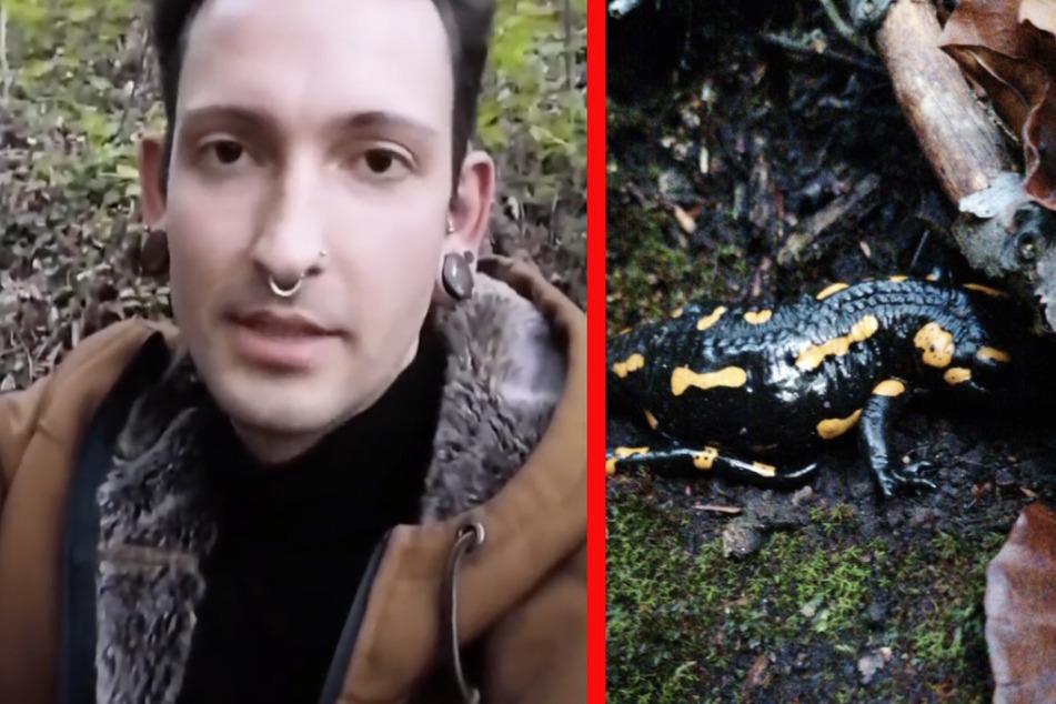 """""""Bares für Rares""""-Star Fabian Kahl macht seltene Entdeckung im Wald"""