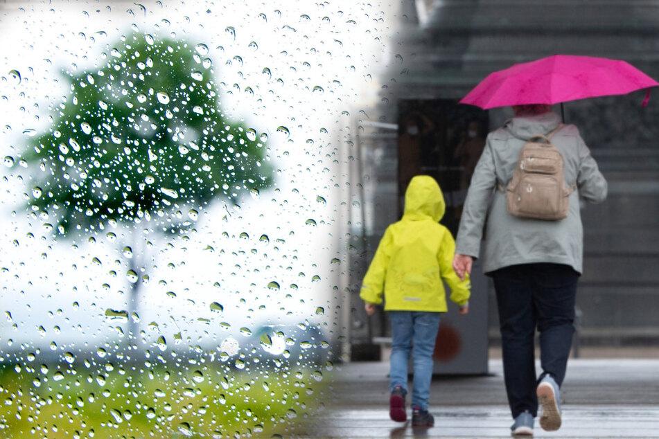 Wetter schlägt um! Feuchtes Frauen-Trio bringt Regen nach Sachsen