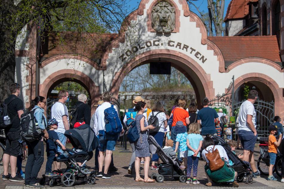 Seit dem heutigen Montag dürfen Tier-Fans wieder in den Leipziger Zoo gehen. Der Andrang am Morgen war groß.