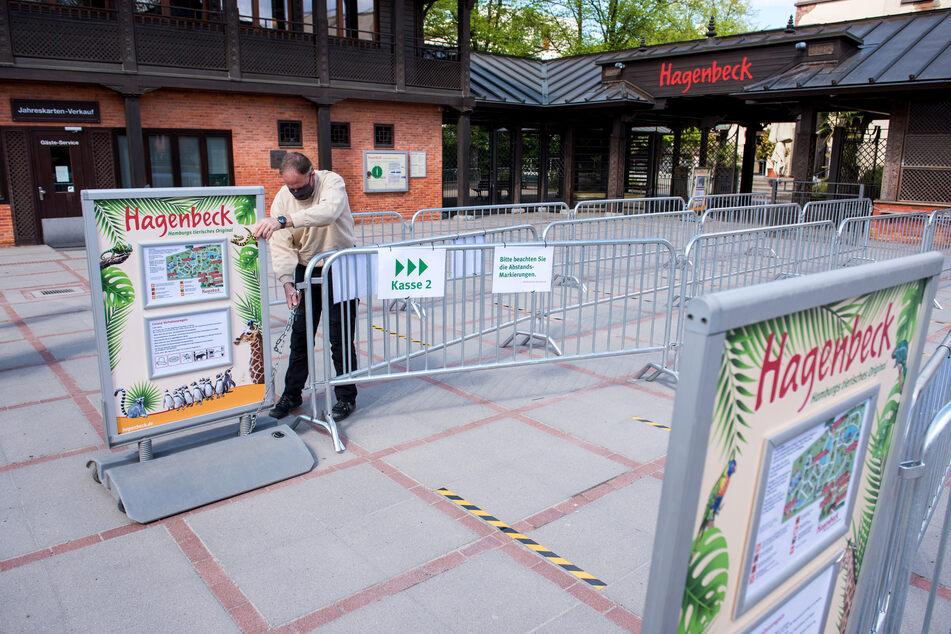 Ein Mitarbeiter stellt am Eingang von Hagenbecks Tierpark Schilder mit Hinweisen zu Verhaltensregeln auf.