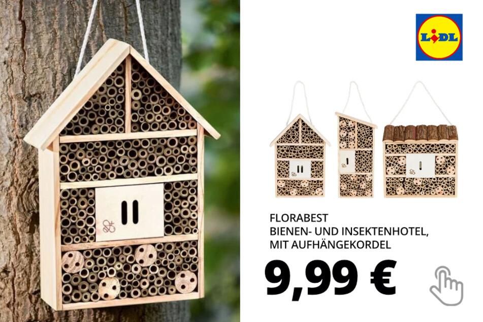 Bienen- und Insektenhotel