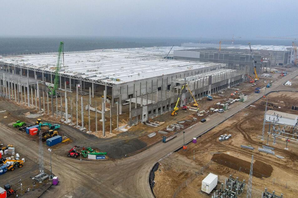 Tesla darf mit den Vorbereitungen für die Batteriefabrik in Grünheide bei Berlin beginnen.