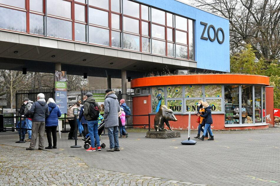 Der Zoo hebt die Eintrittspreise tierisch an.