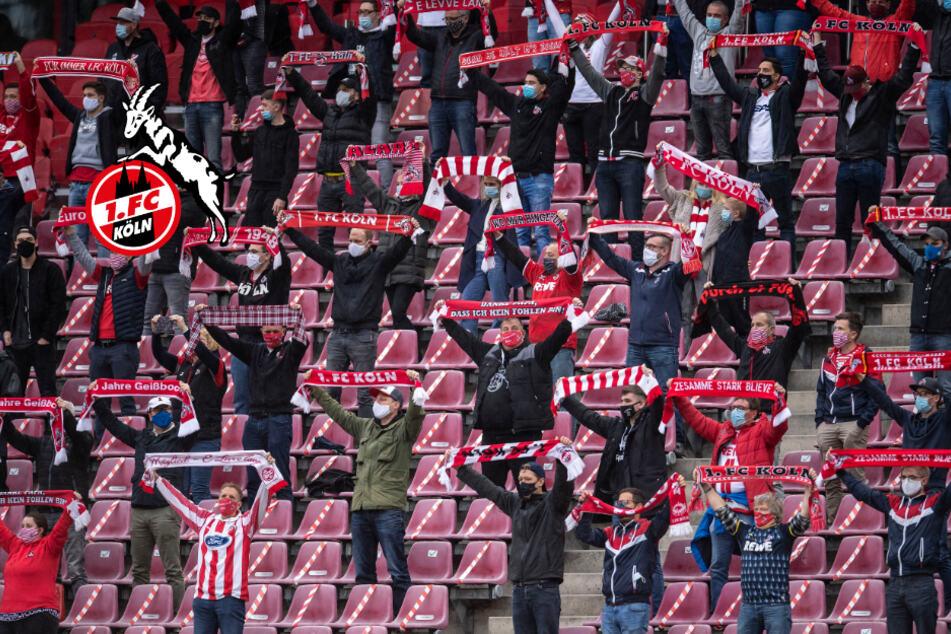 Fan-Rückkehr beim FC-Endspiel gegen Schalke? So könnte es klappen!