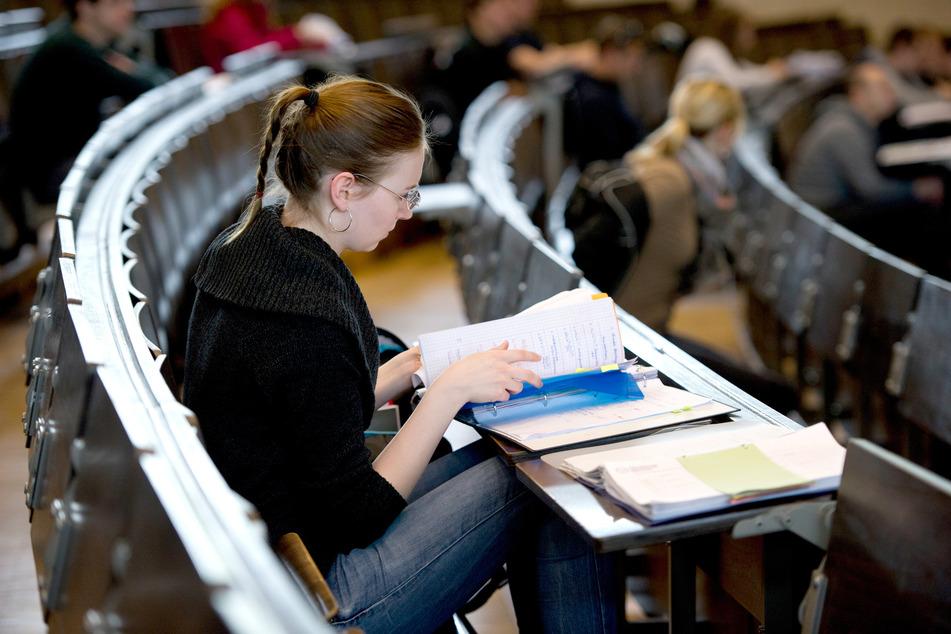 Eine Studentin lernt an der TU Dresden. (Archivbild)