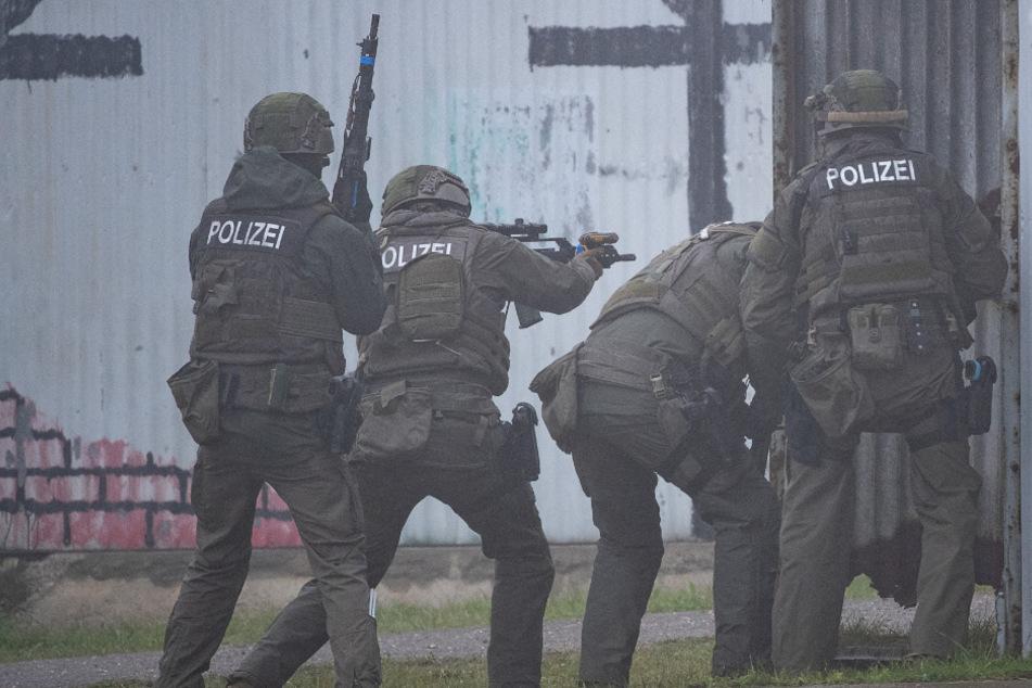 SEK nahm in Mühlacker einen Mann fest, der mehrere Waffen besaß. (Symbolbild)