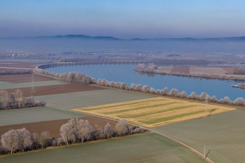 Der Flutpolder Eltheim an der Donau im Landkreis Regensburg ist laut Studie wirksam.
