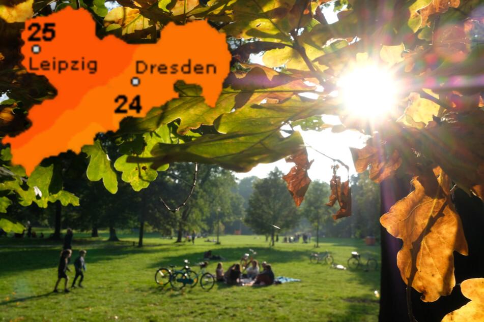 Bei fast sommerlichen Temperaturen werden die sächsischen Parks vor allem am Sonntag wohl noch einmal richtig voll. (Symbolbild)